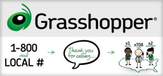 8 grasshopper img