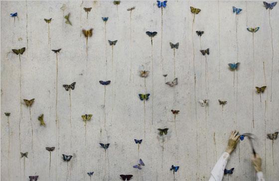 farfalle - Robert and Shana Parkeharrison