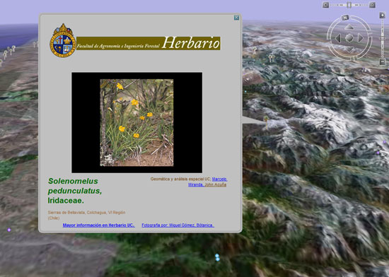 erbario - google earth